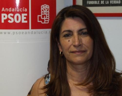 Guadiato Información - Entrevista con la alcaldesa de Peñarroya-Pueblonuevo, Luisa Ruiz - 2008072610592869699800_L